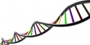 Google crea plataforma para almacenar genoma de personas
