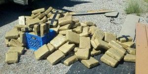 Decomisan 1.5 toneladas de mariguana en Tamaulipas