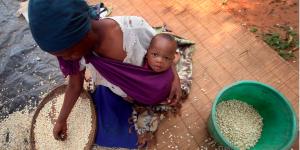 Mueren más por hambre que por guerras: FAO