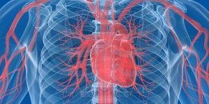 Enfermedades cardiovasculares son la primera causa de muerte en México
