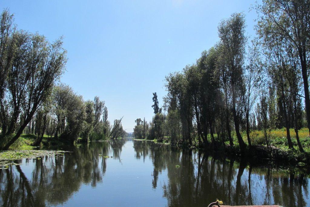 Chinampas de Xochimilco están amenazadas por la contaminación