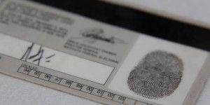 SRE detecta 500 documentos falsos en Tamaulipas