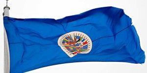 OEA invoca Carta Democrática para evaluar situación de Venezuela