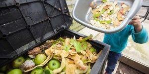 Reducirían a la mitad desperdicios de alimentos en AL
