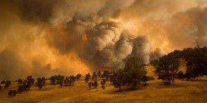 Más de 13 mil evacuados por incendios en California