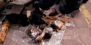 Encuentran heroína oculta en autobús en Querétaro