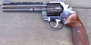 Niño de 2 años dispara a su abuela