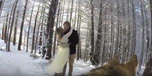 Video: perra graba la boda de sus dueños