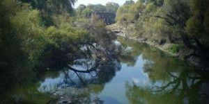 En acuíferos de Guanajuato hay radiactividad: SENER