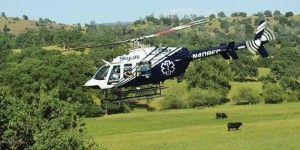Mueren cuatro personas al estrellarse helicóptero médico