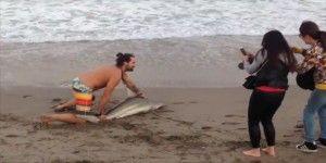 Video: turista saca del agua a tiburón para tomarse una foto