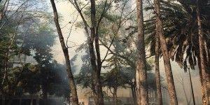 Ocurre incendio en inmediaciones de Parque Hundido
