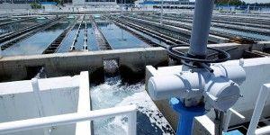Legisladores buscarían opinión de expertos de la UNAM para nueva ley de aguas