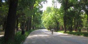 Bosques de Chapultepec, Aragón y Tlalpan extienden horarios