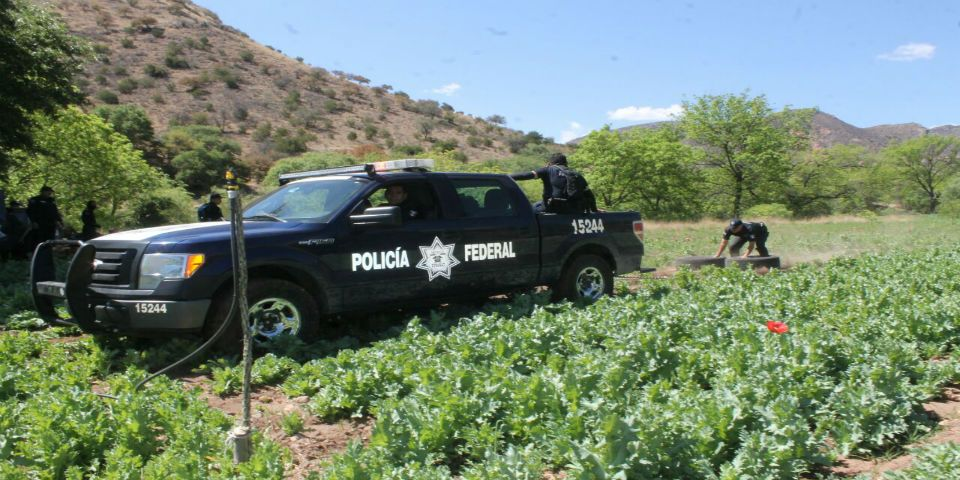 Foto de Policía Federal