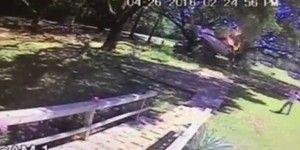 Video: piloto sale con heridas menores tras desplome e incendio de aeronave