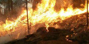 Muere voluntario tras combatir incendio forestal en Michoacán