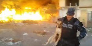 Video: policía federal rescata a perro de un incendio