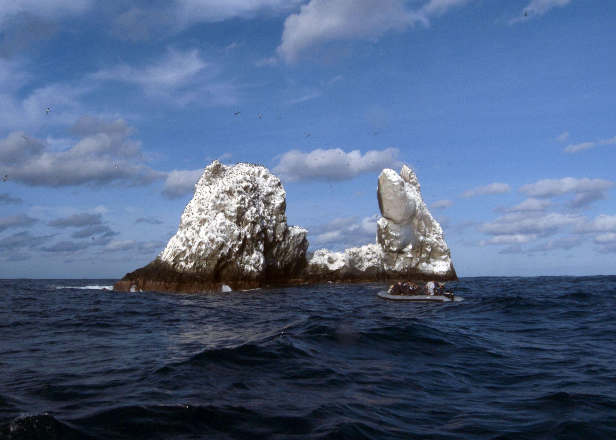 Isla Roca Partida. Foto de internet