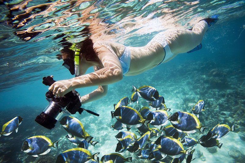 Foto de exposureguide.com