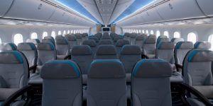 Video: pareja viaja sola durante vuelo