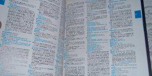 Diccionario de Oxford incluye a 'Yolo' como palabra