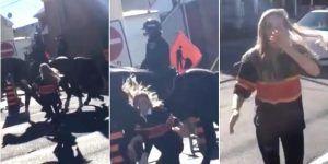 Video: por qué no debemos pararnos detrás de un caballo