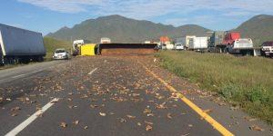Vuelca tráiler en la carretera a Saltillo en Nuevo León. Tres heridos