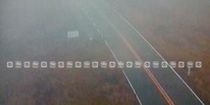 Banco de niebla afecta carretera México–Cuernavaca