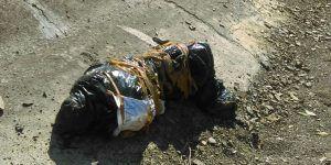 Encuentran cuerpo en una bolsa en la Autopista del Sol