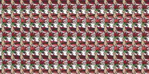 ¿Usted puede encontrar al Santa Claus millonario?