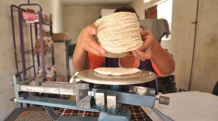 Siguen vendiendo el kilo de tortilla en 16 pesos