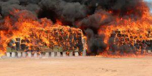 Incineran 7.9 toneladas de drogas en Sonora