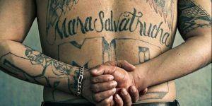 Trump acusa a Obama de permitir crecimiento de la Mara Salvatrucha