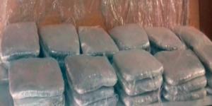 Hallan mariguana en empresa de paquetería en Jalisco