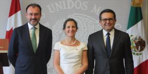 'Podemos mejorar el TLCAN': Luis Videgaray