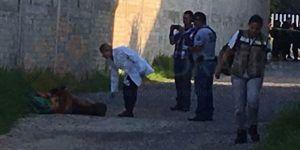 Arrojan dos cadáveres torturados frente a Semefo de Chilpancingo