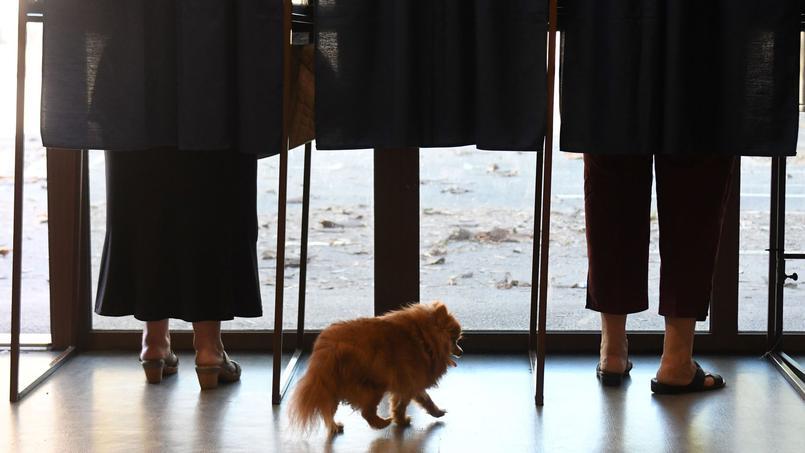 Logra Macron mayoría absoluta