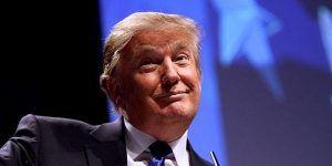 Aconsejan a Trump que deje de tuitear