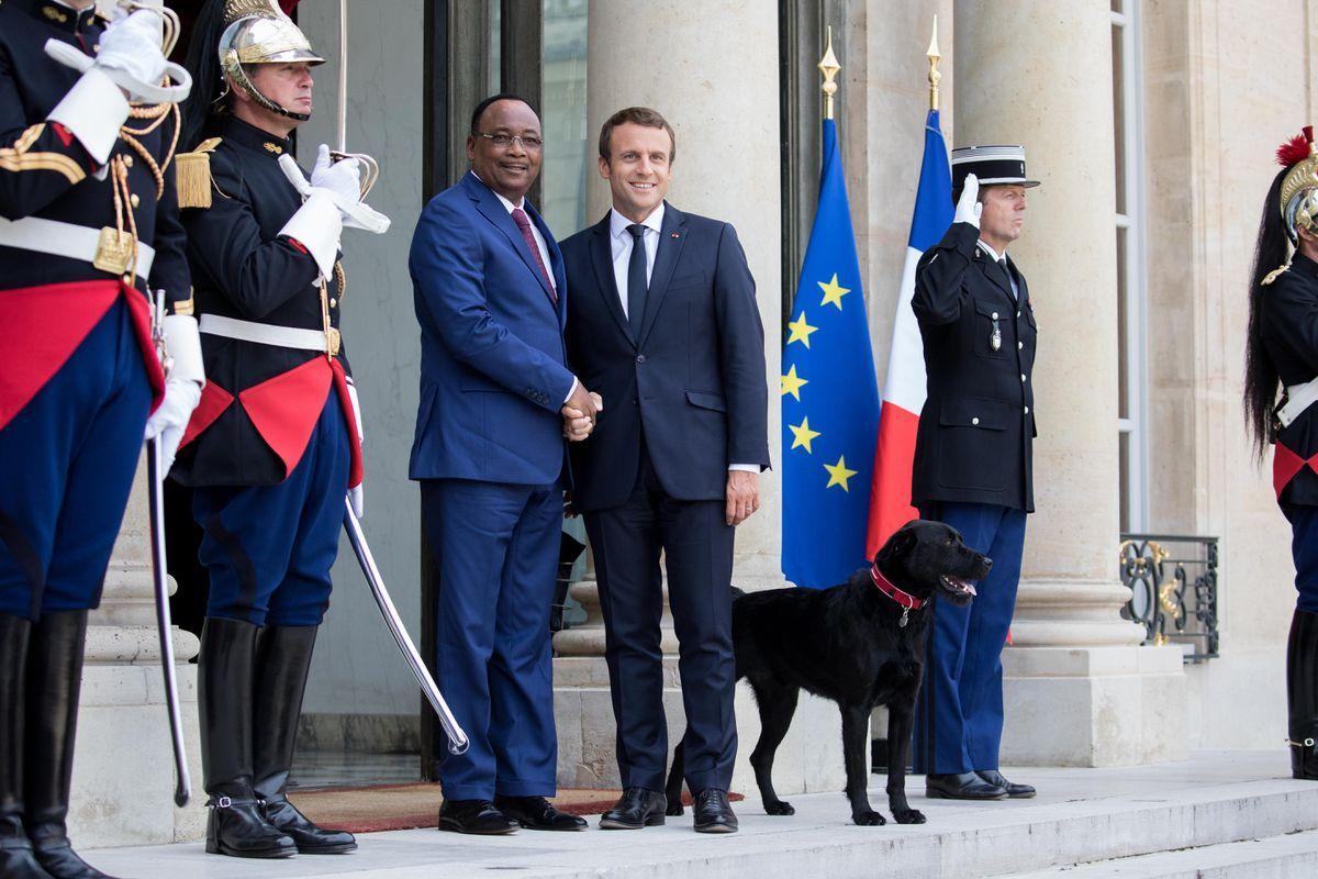 Conoce a Nemo Macron, la mascota presidencial de Francia