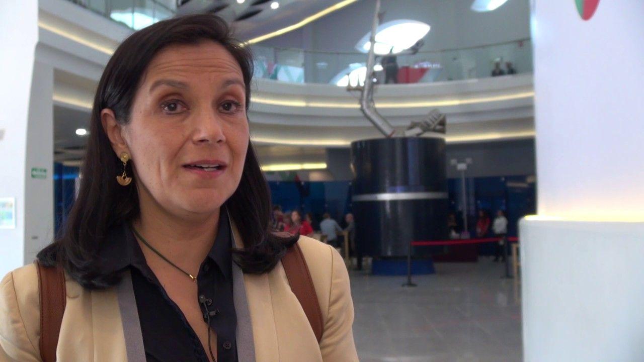 Adriana Labardini asume temporalmente presidencia del Ifetel